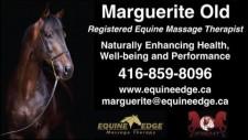 Registered Equine Massage Therapist
